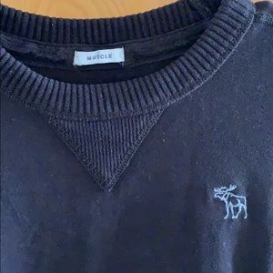 Abercrombie & Fitch Shirts - Abercrombie Men's sweater tee